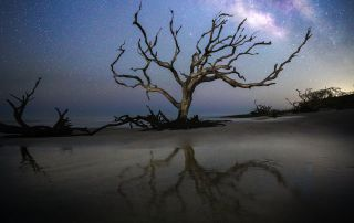 "Chris Greer, ""Milky Way Magic"""