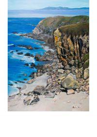 CA Coastal
